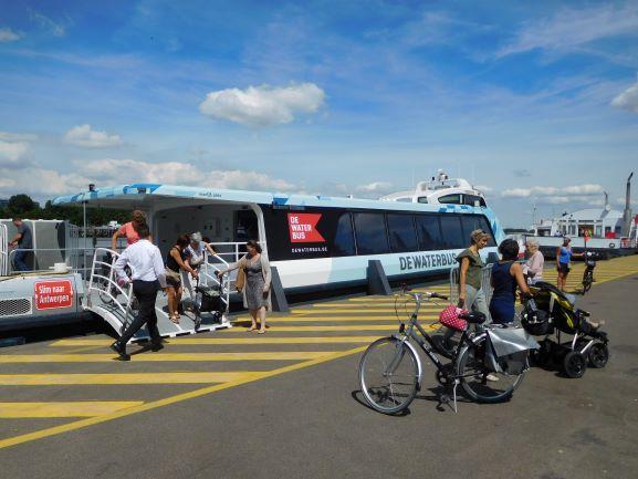 DeWaterbus tussen Kruibeke en Antwerpen.